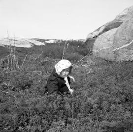Photograph of Victoria picking berries in Fort Chimo, Quebec