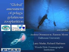 Global assessment of pelagic gelatinous zooplankton : [PowerPoint presentation]