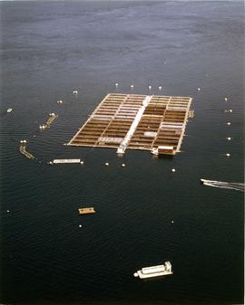 Photograph of a fish farm