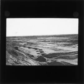 Photograph of the desert